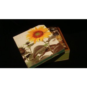 Tea-box with 2 X 24 different Mighty Leaf Tea bags